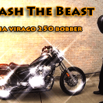 Yamaha Virago 250 Spring Break 2015