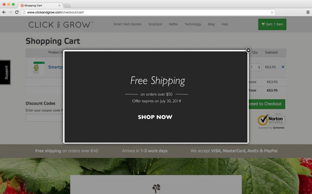 Simple and surprisingly effective exit intent popup examples