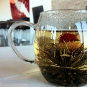 Flowering Jasmine tea infusion