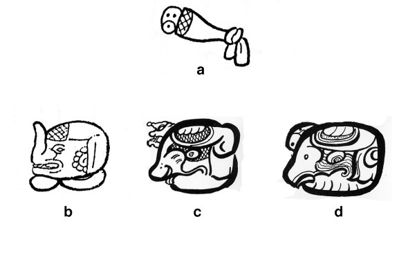 Figure 7. The headband alone (a) as AJAW in Maya Script: (b) in the Copan royal title, and (c and d) in two variants of the AJAW logogram from Palenque's Tablet of the 96 Glyphs.