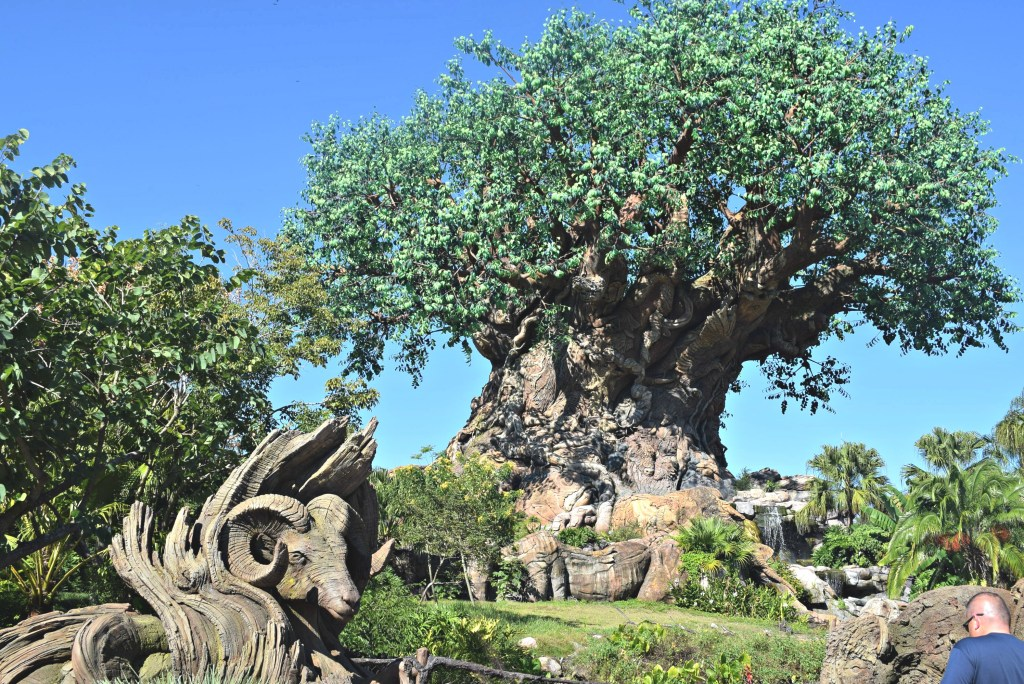 WDW The Tree of Life