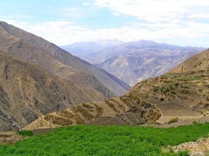 J3 15-jilla crops-on-terraces