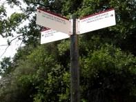 2014-07-12 Ruta dels Refugis (105) Cami dels Cartoxans Bifurcation Cornudella
