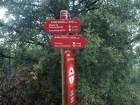 2014-07-12 Ruta dels Refugis (75) route forestiere Pla de Guardia Panneau