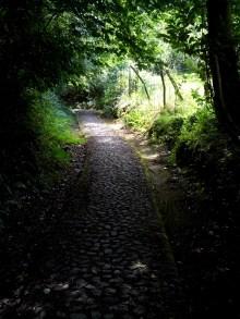 Camino Primitivo Mayake 17 La Rebasa pavés