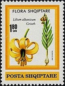 Flora shqiptare stamp 2