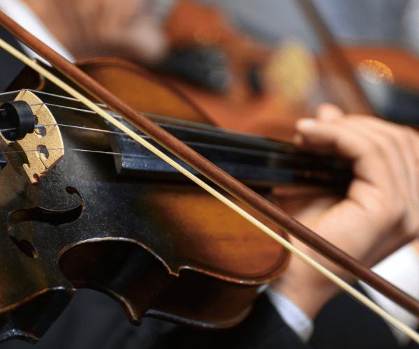 Hormonal Symphony Balancing