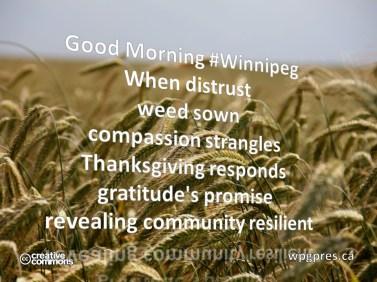 Community Reslient