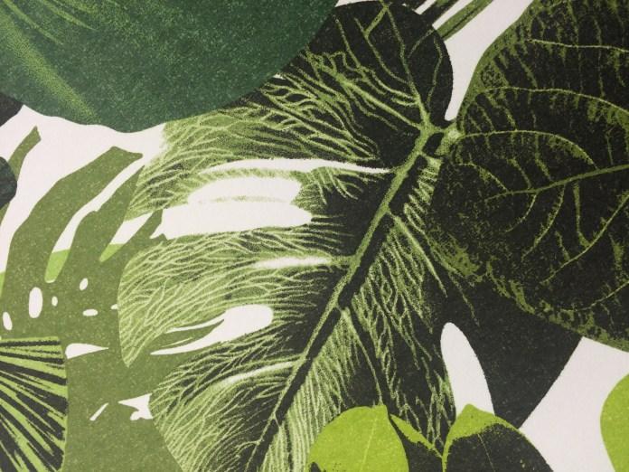 cartadaparati-foglie