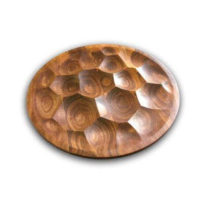 Modern Turtle Serving Tray by Mayfield Modern