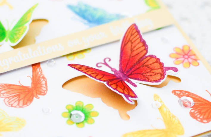 hero-arts-butterfly-birthday-card-using-colored-stamping-copic-coloring