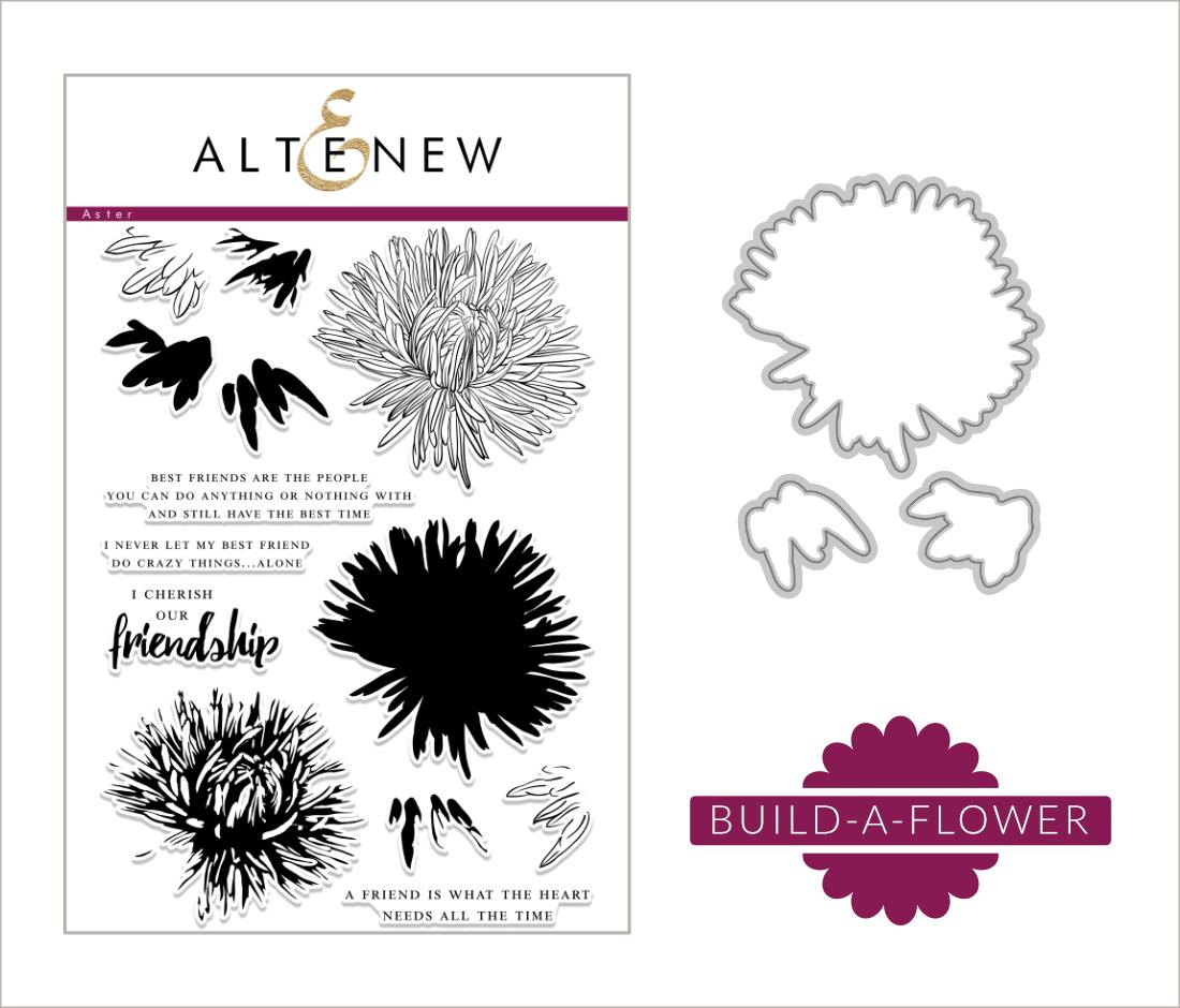Aster_Build_a_Flower_blogpost (2)