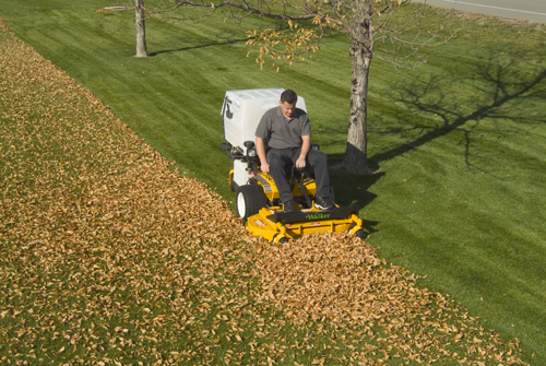 Mulching Vs Bagging Leaves
