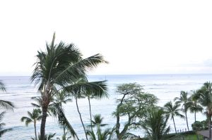 view from the Halekulani