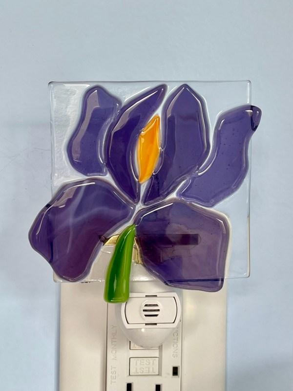 Iris Fused Glass Night Light