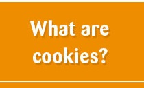 what are cookies