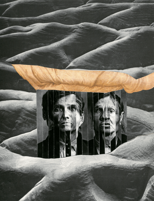 collage-1414