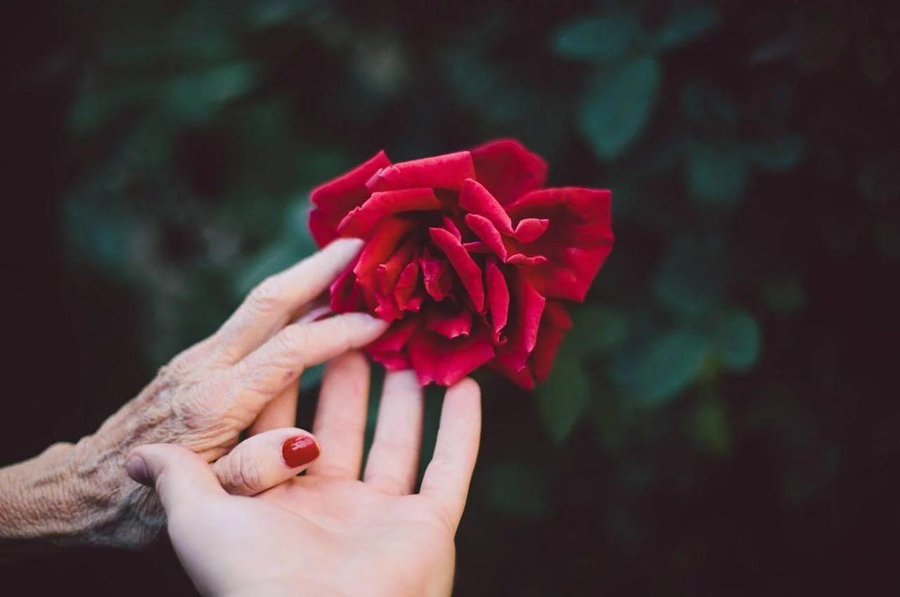 ayudando a un jubilado a levantarse a honrar la vida