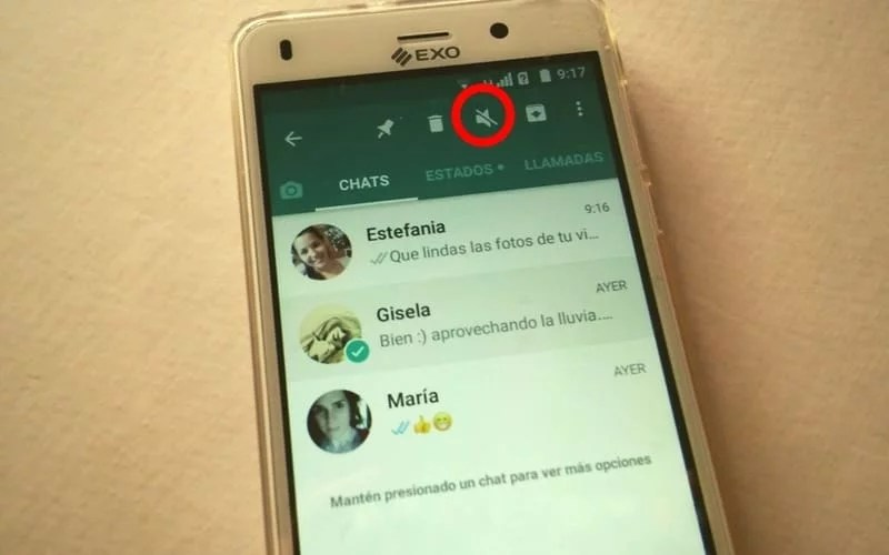 como silenciar chat en whatsapp