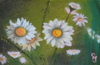 Daisy's 4 x 6 pastel painting on watercolor paper, June 2016