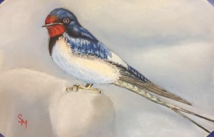 Swallow, 5x7, January 2017