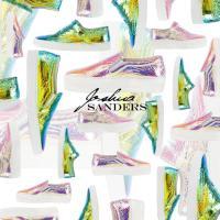 A shoe love affair: Joshua Sanders footwear!