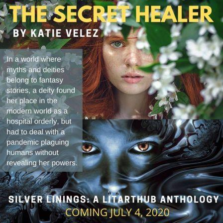The Secret Healer - Silver Linings