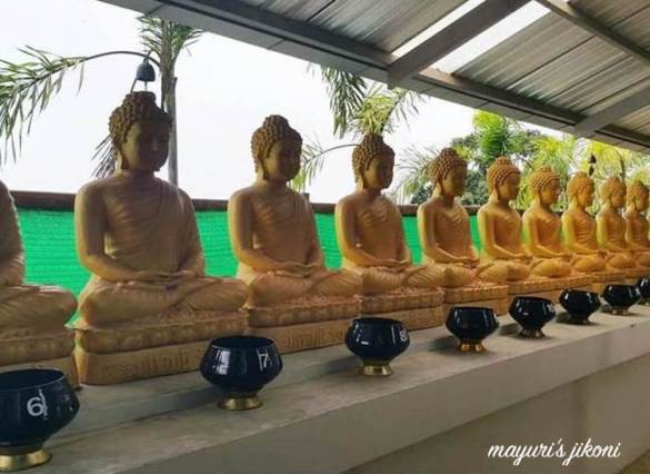 Big Buddha 11