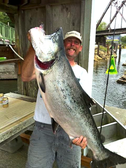 MSSF-45 pound Salmon