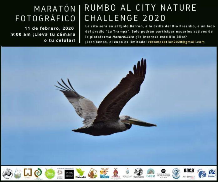Resultado de imagen de City Nature Challenge 2020