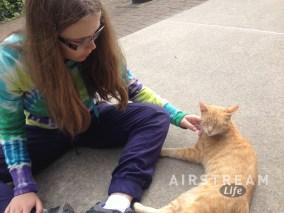 Ohiopyle Tonto cat