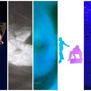 MEB - Visuel : Guillaume Lacoste