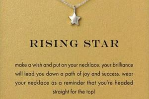 Rising Star Necklace 3