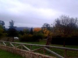 Otoño desde el parque de Luciana