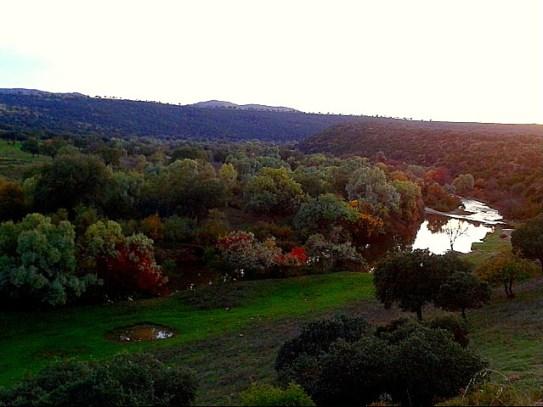 Colores otoñales en el río Guadiana (El Chiquero)