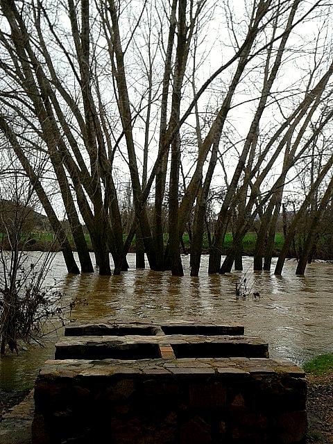 El agua anega el Área Recreativa El Ejido (riada 2014)