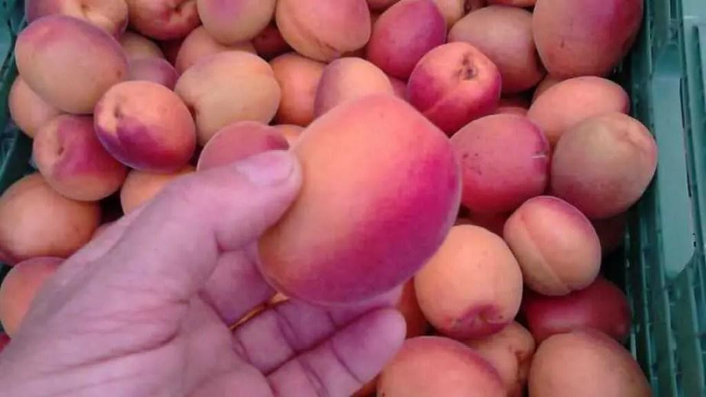 Mazot de Vex abricot