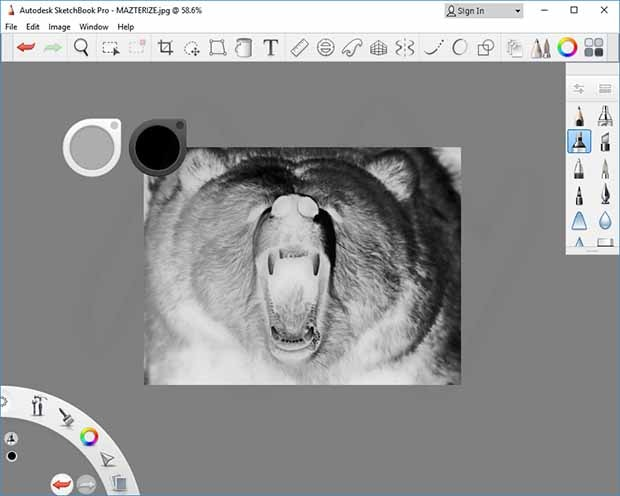 Autodesk SketchBook Pro Crack With Product Key