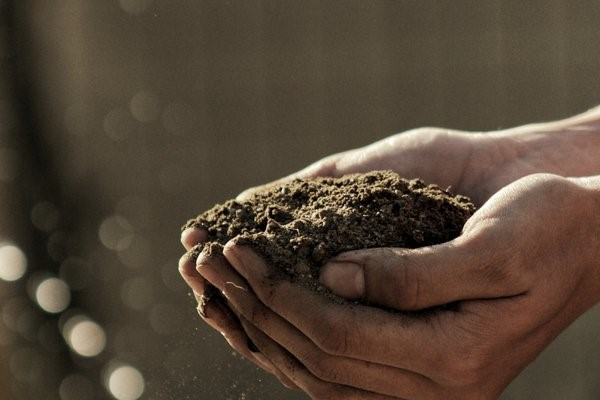 Нови земјоделски технологии во современото земјоделство