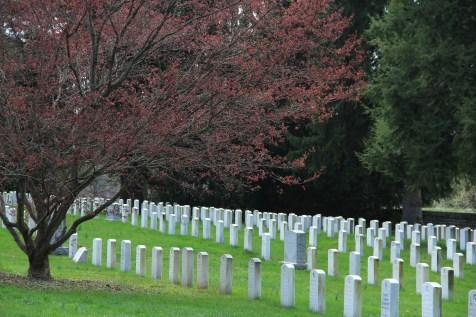 Gettysburg Cemetary