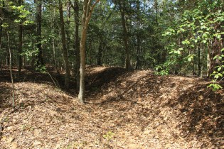 Cold Harbor (Trenches)