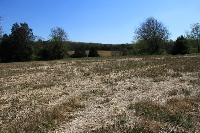 Battle of the Wilderness (Farm)