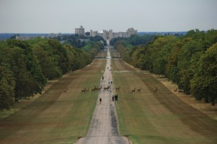 Long Walk from Windsor Castle