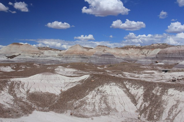 Petrified Forest/Painted Desert