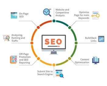 SEO - le cycle de vie