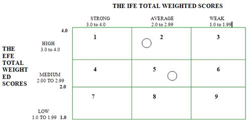efe matrix sample