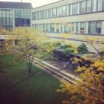 Aditi: IT Consulting -> Schulich