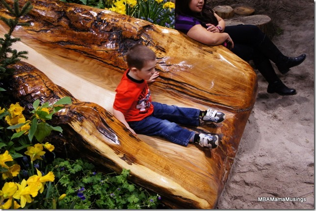 Tree Trunk Slide at Canada Blooms