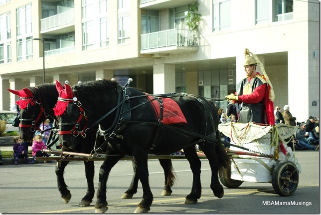 Live horses pulling chariot in Santa Claus Parade