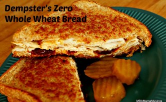 Sandwich made with new Dempster's Zero Bread